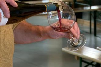 Drumul vinului din Alsacia, faimos în întreaga lume. Care sunt principalele atracții