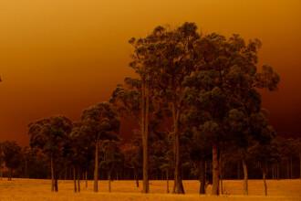 Stare de dezastru în Australia. Infernul de foc se vede din spațiu