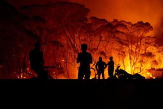 Aproape un milion de hectare au ars în Australia. Situaţia este disperată