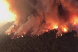 Cel puțin 24 de oameni și un MILIARD de animale au murit în incendiile din Australia