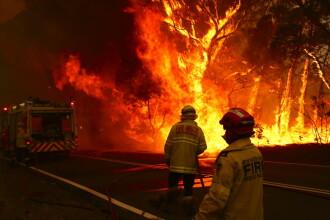 """Australia, pusă la încercare de un nou """"mega-incendiu"""" ce a cuprins peste 6.000 de km pătrați"""