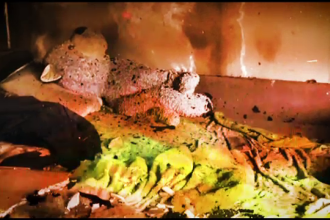 Patru copii au ars de vii încuiaţi în casă, în Timișoara. Ce făcea mama lor în acest timp