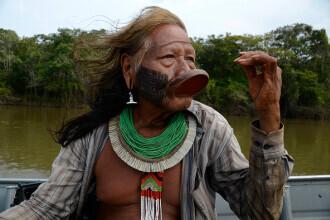 Indigenii amazonieni folosesc o fiertură din coaja unei liane pentru a se apăra de Covid-19