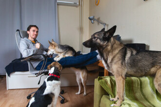 Instanța a decis: Persoanele care stau la bloc pot avea câini și pisici doar cu acordul vecinilor