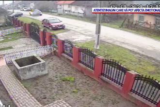 Imagini revoltătoare într-o localitate din Sălaj. Un șofer a călcat intenționat cu mașina un câine
