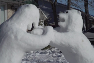 O familie din Canada și-a animat curtea casei cu o duzină de urși polari din zăpadă. VIDEO