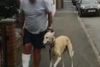 Un bărbat a cheltuit sute de euro la veterinar pentru a afla de ce șchiopăta câinele său. A rămas uimit când a aflat motivul