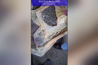 Droguri ascunse în saci cu boabe de cafea, descoperite de polițiști la Galați