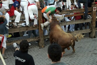Trei persoane au fost ranite la alergarile cu tauri din Pamplona