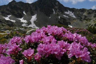 Voteaza Parcul National Retezat in topul celor 7 minuni naturale ale lumii!