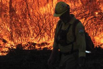Doua orase din Arizona, evacuate din calea parjolului. 3.000 de pompieri se lupta in zadar cu focul