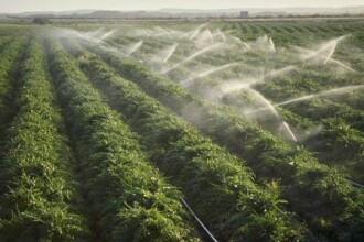 Fermierii: Agricultura este in pragul colapsului