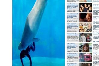 INCREDIBIL! A salvat-o de la moarte o balena! Vezi FOTO!