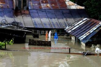 Inundatiile, o frana in calea redresarii economiei.Culturile sunt la pamant