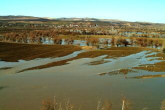 Agrostar: Inundatiile vor scumpi alimentele cu inca 8%