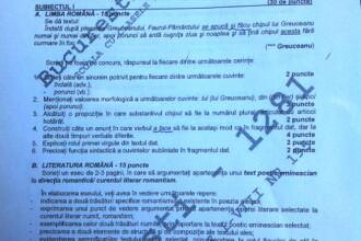 Titularizare 2011. Greuceanu si Eminescu pentru educatori. Subiecte mai grele ca la BAC? Comenteaza