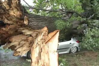 Furtunile au inlocuit canicula. Copaci smulsi, inundatii si masini distruse, in estul tarii