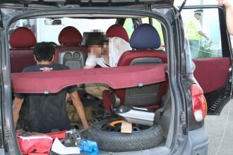 Doi sirieni au fost gasiti ascunsi sub o masina, in vama Nadlac. Cum i-a dat de gol soferul