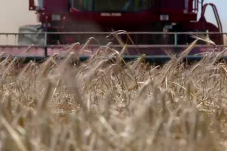 Lectia de afaceri predata de un agricultor francez in Romania. Cum a ajuns sa detina peste 3000 ha