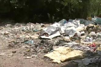 Deseuri profitabile. Cum va fi transformat gunoiul de la halda ecologica din Oradea in energie electrica