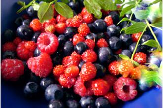 Siropurile delicioase din fructe le asigura producatorilor venituri substantiale