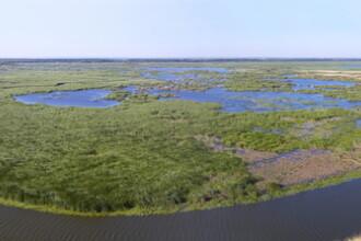 Delta Dunarii, laudata pentru frumusetea ei in New York Times. Ce surprize au descoperit insa americanii in Romania