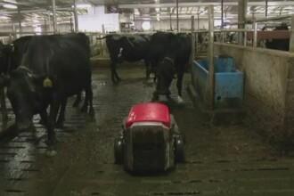 Fermele inteligente, viitorul agriculturii. Marturiile unui agricultor din SUA care a inlocuit fermierii cu roboti
