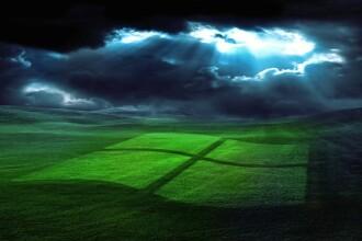 Pentru prima data, Windows XP a fost depasit de Windows 8.1 la numarul de utilizatori