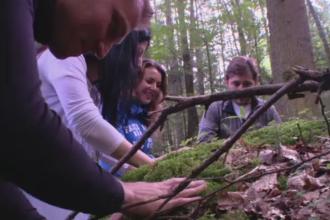 Forest therapy, noua forma de vindecare in Romania. Cat costa o sedinta in padurile de la Rasnov