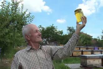 Prapad printre albine si criza pentru apicultorii din Romania. La cat va ajunge pretul mierii in prag de iarna