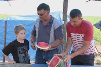 Pepenii romanesti ajung in pietele din Vestul Europei. Cu cat se vinde kilogramul la taraba