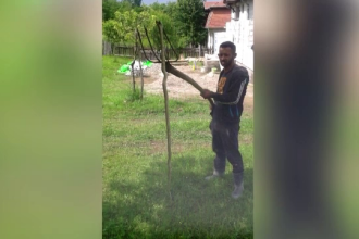 Judetul din Romania invadat de serpi si de peste 2 metri.