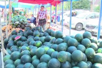 Ministrul Agriculturii obliga vanzatorii de pepeni sa aiba etichete speciale. Ce inteleg oamenii din poza