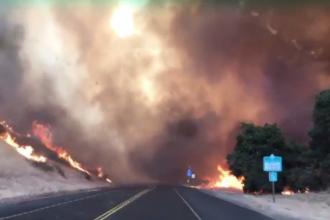 Noi incendii grave de vegetatie in California. O caprioara, filmata alergand ingrozita pe sosea