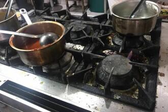 Dezastrul gasit de Protectia Consumatorului la 2 terase din Mamaia. Rata cu tot cu pene, bagata la congelator. VIDEO