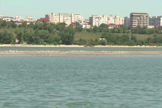 Insula aparuta in mijlocul Dunarii. Explicatia specialistilor pentru fenomenul care se produce foarte rar