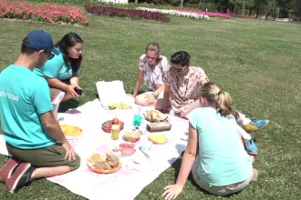 Ziua picnicului, in Baia Mare. Zeci de oameni si-au intins paturile pe un camp si cosurile pline cu bunatati