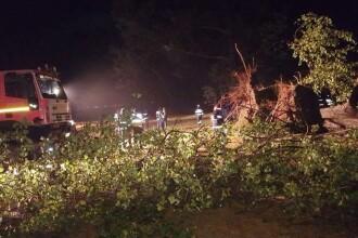 Un mort si 14 raniti in urma unei furtuni puternice in Bihor. Martor: