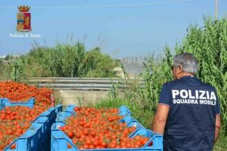 Operatiune a politiei din Italia pentru eliberarea sclavilor din ferme. Cati romani munceau in conditii de mizerie
