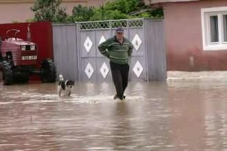 Pagube uriașe după inundații. Oamenii au rămas fără animale, iar în case au tone de noroi