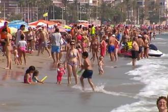 Autoritățile, în alertă: cea mai periculoasă specie de meduză a fost găsită pe plajă