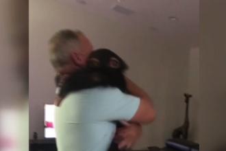 Reacția emoționantă a unei maimuțe atunci când și-a revăzut familia adoptivă