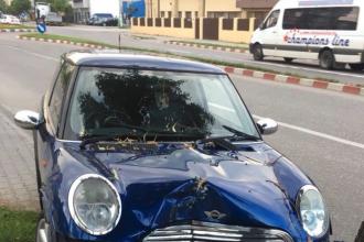 O șoferiță din Dâmbovița s-a urcat băută și drogată la volan. Ce a urmat