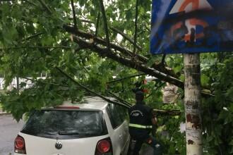 Copaci căzuți pe mașini și locuințe inundate în București. Ploile vor continua în următoarele zile