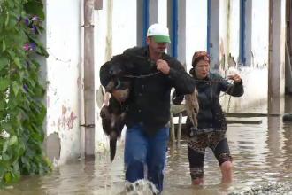 Zeci de gospodării sub ape după codul roșu de inundații. Oamenii au rămas fără animale