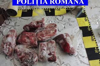 Percheziții la braconieri: polițiștii au găsit carne de porc mistreț într-un frigider