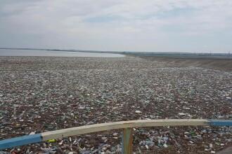 Dezastru pe râul Olt. Barajul de la Drăgănești s-a transformat în groapă de gunoi. VIDEO