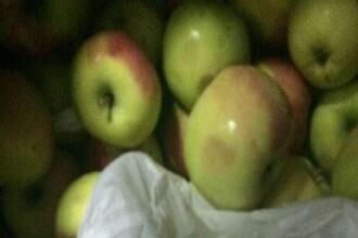 O moldoveancă a rămas fără mere la Vamă. Mirosul care i-a alertat pe poliţişti