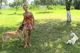 Problemele de care se lovesc românii care vor să meargă cu animalele în vacanță pe litoral