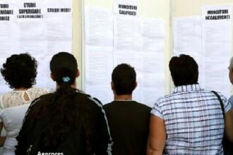 Peste 2.100 de joburi pentru români în Spania, Germania și Olanda. Ce meserii se caută